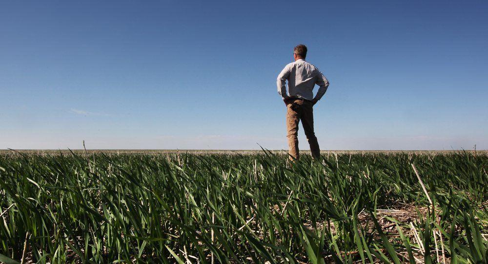 MJR05615_farmer_in_field