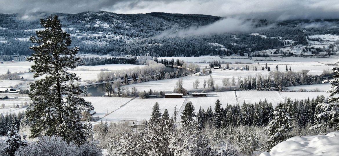 The Shuswap River winds its way through snow-covered farmland north of Enderby.