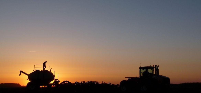 sunset_check-3